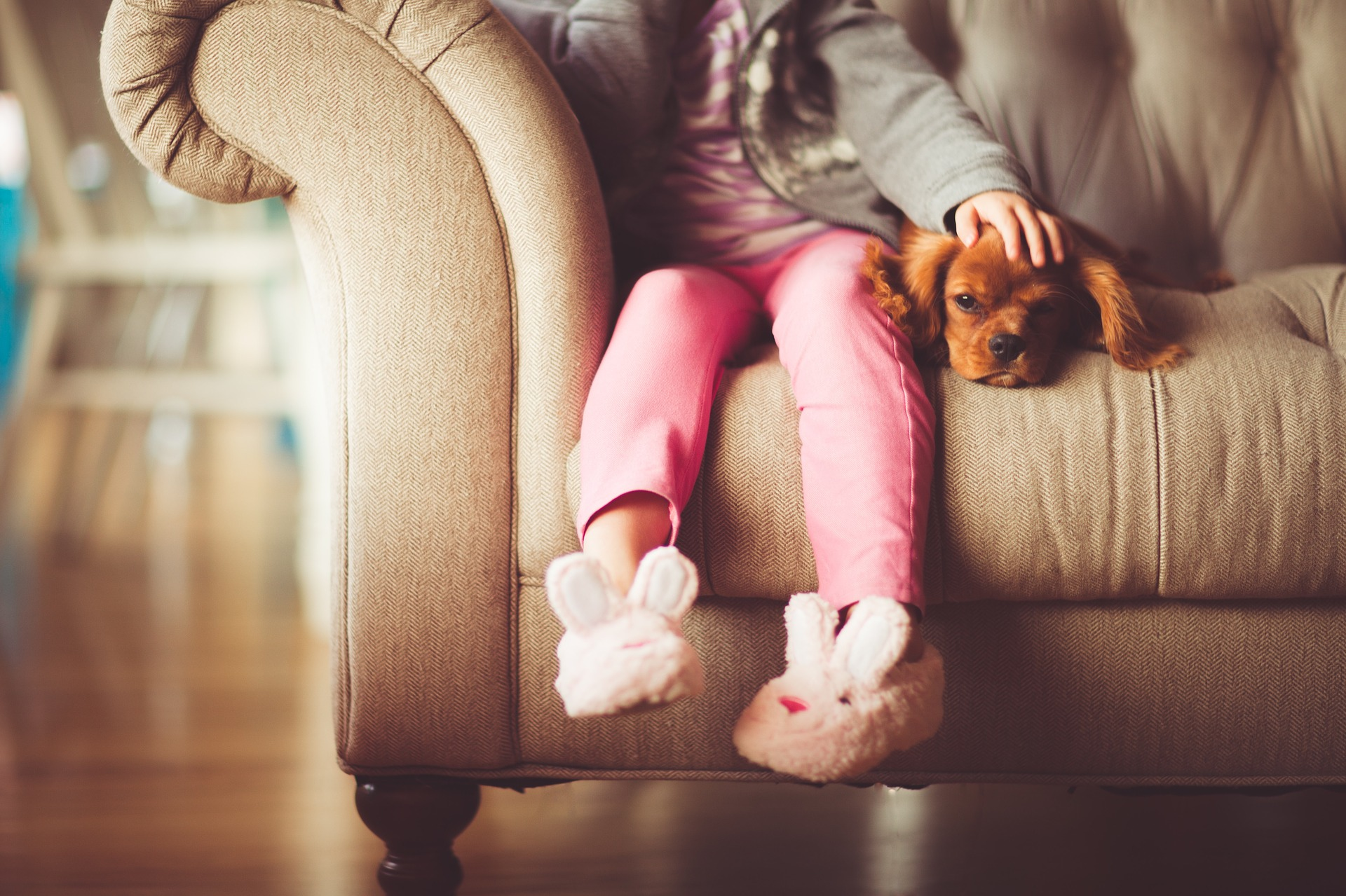 Young girl sitting on couch with small puppy
